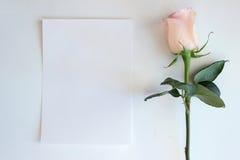 Rose rosada y maqueta de papel en blanco Fotografía de archivo libre de regalías