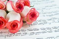 Rose rose et note Photos libres de droits
