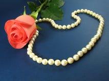 Rose rose et perles Images stock