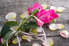 Rose and Rose petals lying down on a wooden table Royalty Free Stock Images