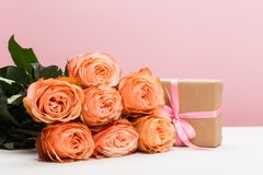 Rose roses with present on pink background, mother`s day, woman`s day stock images