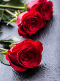 Rose Roses rouges Bouquet des roses rouges Plusieurs roses sur le fond de granit Jour de valentines, fond de jour du mariage Image libre de droits