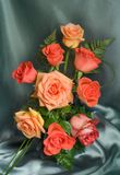 Rose rosse Immagine Stock