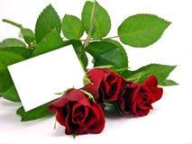 Rose rosse con la scheda del regalo Fotografia Stock Libera da Diritti