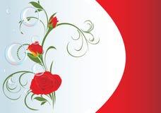 Rose rosse con le bolle e l'ornamento floreale. Scheda Fotografia Stock