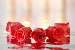 Rose rosse del sapone con la riflessione Fotografie Stock