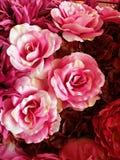 Rose rosse e dentellare senza giunte del tessuto immagini stock libere da diritti