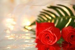 Rose rosse e una foglia verde con la riflessione sotto un velo bianco di nozze Fotografie Stock Libere da Diritti
