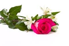 Rose rosse ed Alstroemeria bianco Immagine Stock Libera da Diritti