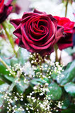 Rose rosse ed altri fiori Immagini Stock Libere da Diritti