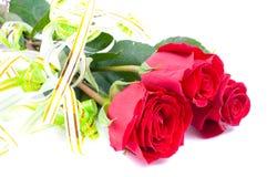 Rose rosse isolate su bianco Immagini Stock Libere da Diritti