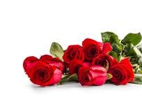 Rose rosse Mazzo delle rose rosse isolate su bianco Fotografia Stock Libera da Diritti