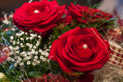 Rose rosse per il giorno del biglietto di S Immagine Stock