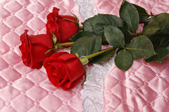 Rose rosse su raso rosa immagine stock