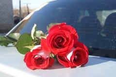 Rose rosse sul tronco di automobile per fondo, fuoco selettivo Fotografia Stock Libera da Diritti