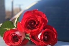 Rose rosse sul tronco di automobile per fondo, fuoco selettivo Fotografia Stock