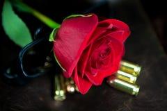 Rose rouge avec des balles Photos stock