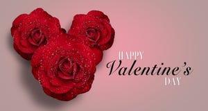 Rose rouge avec des gouttelettes d'eau sur le fond blanc image libre de droits