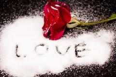Rose rouge dans la neige sur un amour noir de fond Images stock