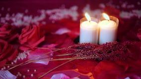 Rose rouge et longueur brûlante de bougie Jour de Valentine banque de vidéos
