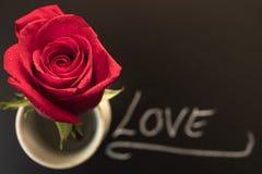 Rose rouge le jour pour de Valentine ` s ou de ` s de mère Image stock