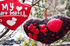 Rose rouge protections molles de coeurs accrochant sur une corde Photographie stock libre de droits