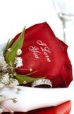 Rose rouge qui dit je t'aime Photo stock