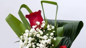 Rose rouge simple Photo libre de droits