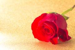 Rose rouge simple sur un Tableau d'or photos libres de droits