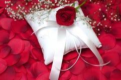 Rose rouge sur l'oreiller de porteur de boucle Images stock
