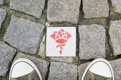 Rose route in Hildesheim Germany. Paving stones with ceramic plaques with rose symbol marking self-guided sightseeing tour Royalty Free Stock Photos