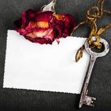 Rose sèche de rouge et photographie vide Photographie stock libre de droits