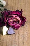 Rose sèche et deux coeurs de chocolat Images libres de droits