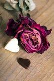 Rose sèche et deux coeurs de chocolat Photographie stock libre de droits