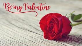 Rose s'est levée sur vieil en bois avec des mots soit mon Valentine Photographie stock