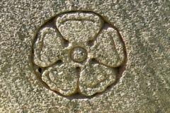 Rose sainte a découpé dans la surface en pierre Photo stock