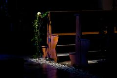 rose samotny zdjęcie stock