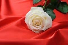 Rose on satin Royalty Free Stock Image