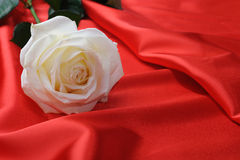 Rose on satin Royalty Free Stock Images