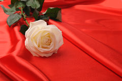 Rose on satin Stock Photography