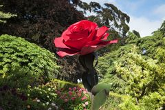Rose Sculpture Christchurch Botanical Gardens Nouvelle-Zélande photos libres de droits