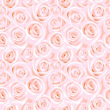 Rose seamless background Stock Photo