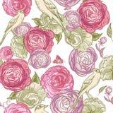 Rose Seamless Background avec des oiseaux Photographie stock libre de droits
