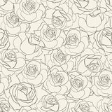 Rose seamless background. Stock Photo