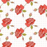 Rose seamless pattern Royalty Free Stock Photography