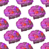 Rose. Seamless pattern with cosmic or galaxy Stock Photo