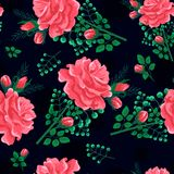 Rose seamless pattern dark-01. Beautiful seamless pattern with pink,red roses on a black background. Summer Vector illustration in the style of shabby chic.Print Royalty Free Stock Photography