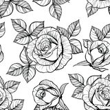 Rose seamless pattern. Isolated black line art. Good for textile design, backgrounds Royalty Free Stock Photos