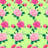 Rose seamless pattern -01 Royalty Free Stock Photos