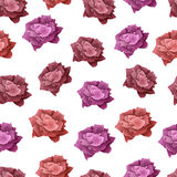 Rose seamless pattern. Red and pink blooming rose. Beautiful flower. Design for gift of paper, save the date, wedding, birthday. Vector illustration Royalty Free Stock Photo
